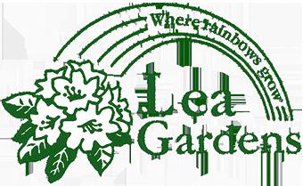 Lea Rhododendron Gardens near Matlock | Specialist Growers